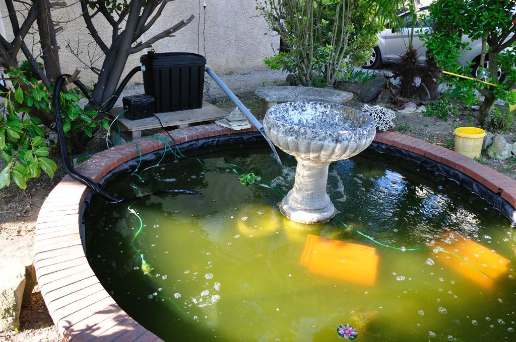le forum de passion bassin bassin de jardin baignade. Black Bedroom Furniture Sets. Home Design Ideas